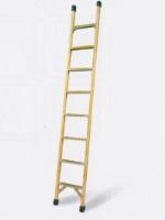 Лестницы стеклопластиковые приставные ТЕЛЕКОМ (ЛСП-Т)
